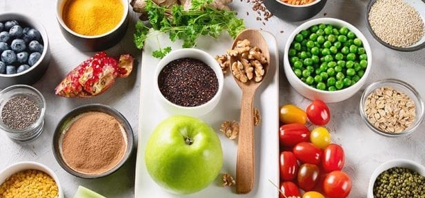plant based nutrition course